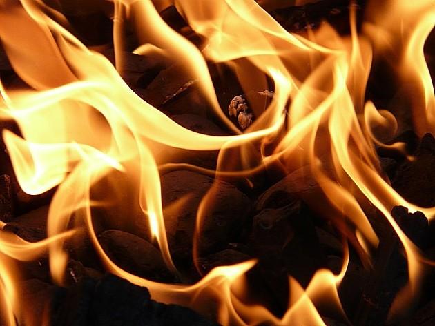 Na Iriškom vencu izgoreo autobus na liniji Novi Sad – Loznica