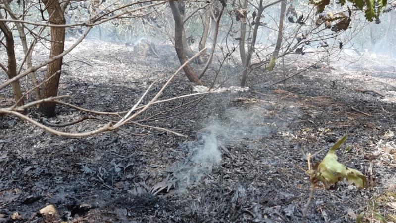 Na Kosovu prva žrtva požara