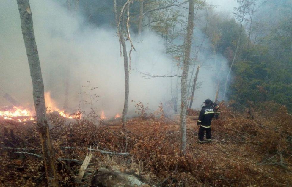 Na Staroj planini požar zahvatio 10 hektara, nema povređenih