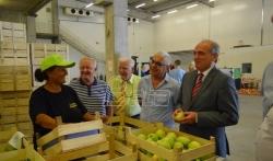 Nacionalni tim za preporod sela preporučio ulaganje u proizvodnju pet zlatnih vrsta voća Srbije