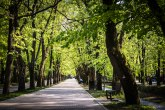Najpopularnije banje u Srbiji na Instagramu FOTO