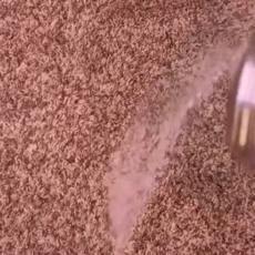 Napravila je OVU mešavinu i posula po TEPIHU - nakon 15 minuta nije verovala šta se dogodilo! (VIDEO)