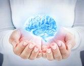 Napravljen veštački mozak koji se razvija poput ljudskog