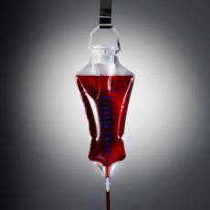 Nazivaju je ZLATNOM krvnom grupom: Ređa je i od NULTE, a na svetu je ima SAMO 43 OSOBE!