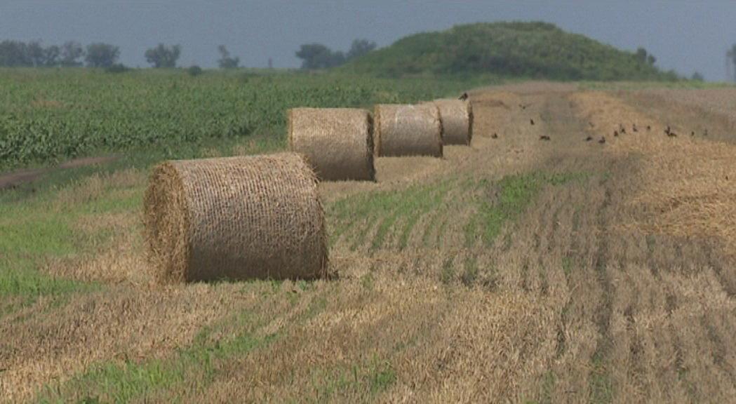 Nedimović u Bečeju: Pripremaju se novi zakoni o poljoprivredi