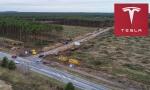 Nemački sud odobrio Tesli seču 92 hektara šume za novu fabriku