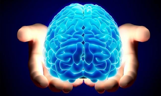 Neuronauka: Istine i zablude o neuronauci