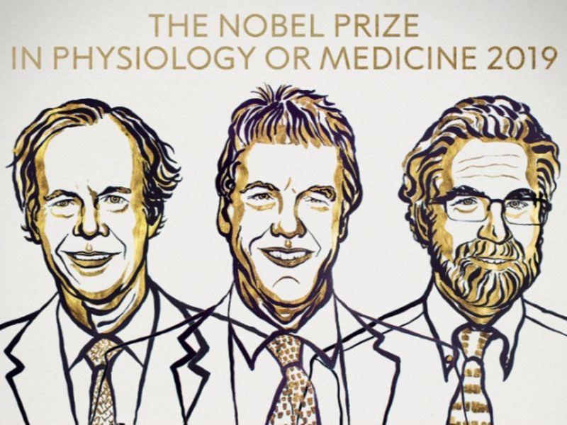 Nobelova nagrada za medicinu za dostignuće u borbi protiv raka i anemije