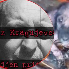 ODREĐEN PRITVOR VLASNIKU AZILA SMRTI U KRAGUJEVCU: Evo u kakvom su stanju psi - istraga ide KORAK DALJE (FOTO)