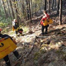 ONI SU NAŠI TIHI HEROJI: Dobrovoljci cele zemlje gasili požar na Mokroj Gori, čuvali leđa svojim kolegama (FOTO)