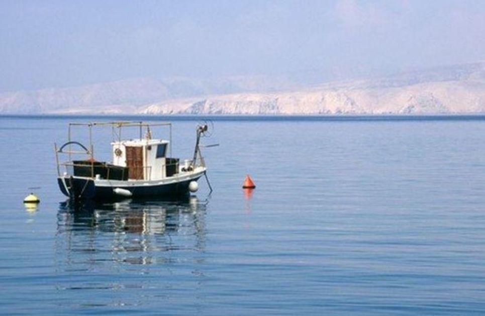 OPASNE ŽIVOTINJE STIGLE U JADRAN: Ako se se spreče prete i roobarstvu i turizmu, Crno more se od njih nije oporavilo 40 godina