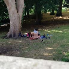 ORGIJE USRED BELA DANA! Napravili grupnjak u parku - prolaznici gledali u neverici i SLIKALI! (FOTO)