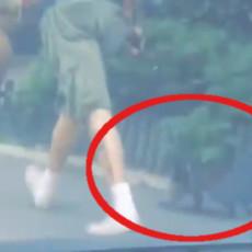 OSOBO, GDE SI NAŠAO I POŠTO Beograđani u šoku - šta to šeta ulicama Mirijeva (VIDEO)