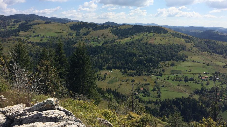 OTAC EKOLOGIJE U SRBIJI: Velika dela Josifa Pančića