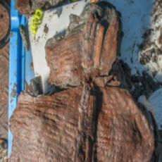 OTKRIVENO U EGIPTU NEŠTO ŠTO KRIJE VELIKU TAJNU: Jedna stvar je zaintrigirala ARHEOLOGE