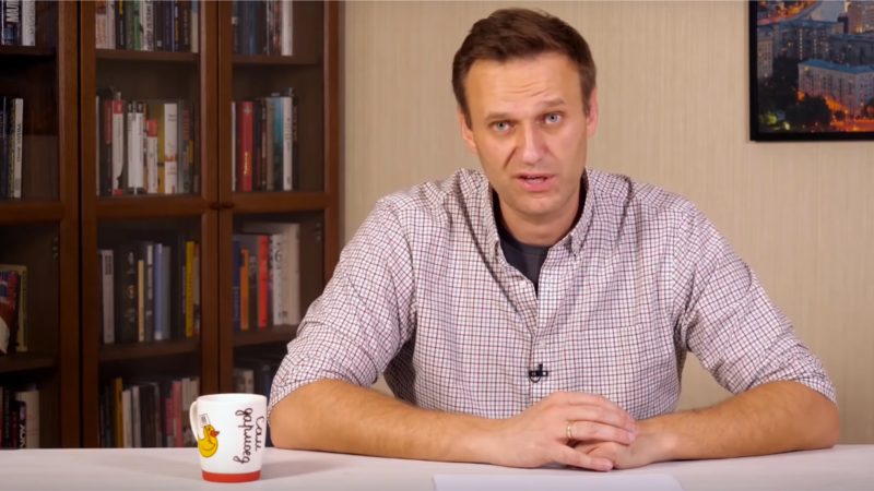 Navaljni uhapšen po sletanju na aerodrom Šeremetjevo u Moskvi