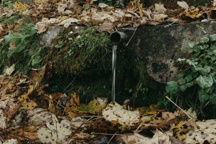 Od pogleda sa Bobije zastaje dah, u njoj se krije preko 100 izvora zdrave vode