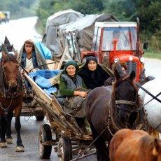 Oluja je zločin koji se ne sme zaboraviti: Ministarstvo spoljnih poslova podsetilo na jednu od najvećih srpskih tragedija