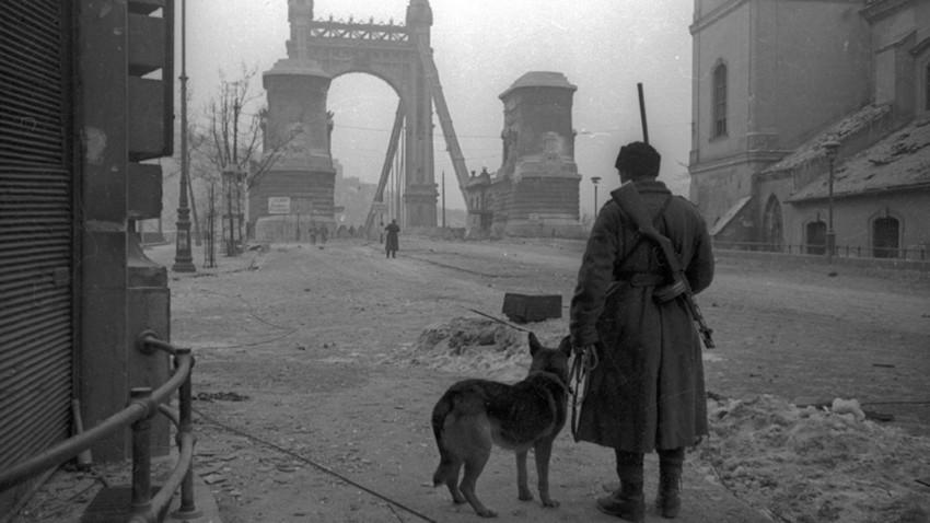 Oslobođena Budimpešta kroz objektiv sovjetskih fotografa