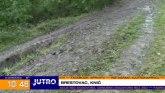 Otkud zmije u Šumadiji u oktobru? VIDEO
