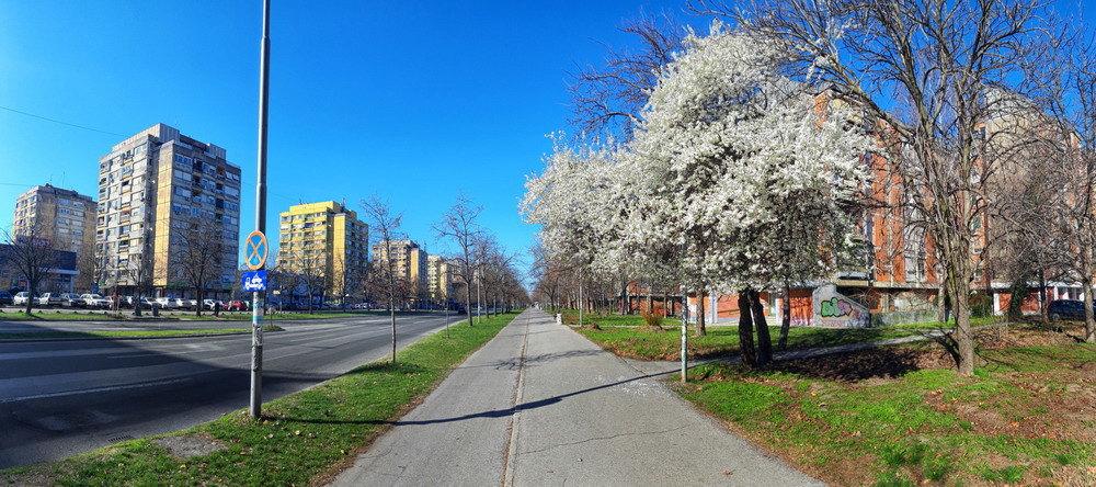 Otvoren Bulevar Bate Brkića