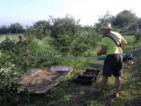 Otvoren konkurs za podršku proizvođačima hrane iz Niša