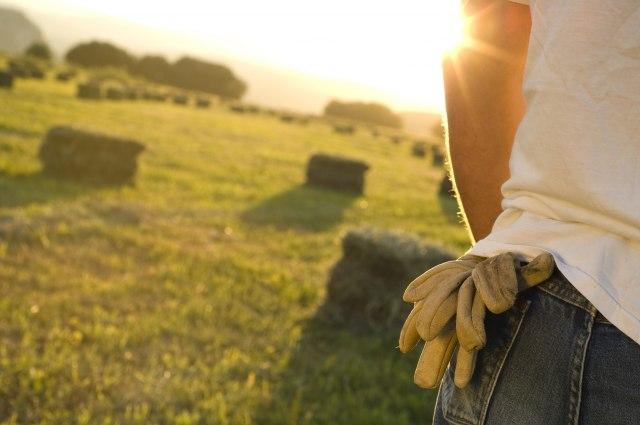 Ovo je jedini način da mali farmer preživi