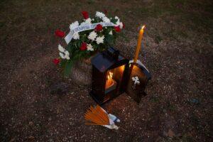 Ožalošćene Nišlije pale sveće za posečene kedrove