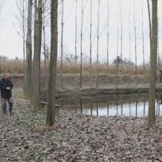 PALO ČUDO SA NEBA NA IMANJE KOD ČAČKA: Dragan odmah sakrio u šupu pronađeno telo