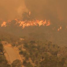 PELOPONEZ POD VATROM: Veliki požar na poluostrvu, naređena hitna evakuacija stanovništva