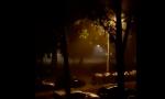 PLjUSAK U BEOGRADU: Jaka kiša i vetar zahvatili pojedine delove grada (VIDEO)