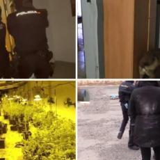 POHAPŠENI SRBI U ŠPANIJI: Banda proizvodila visoko adiktivnu supstancu, policijska akcija trajala MESECIMA