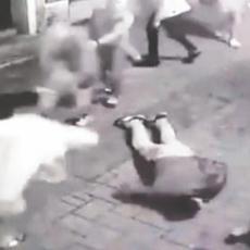 POKUŠAJ TEŠKOG UBISTVA: Optužnica protiv osam osoba iz Šida za prebijanje mladića u Novom Sadu (VIDEO)