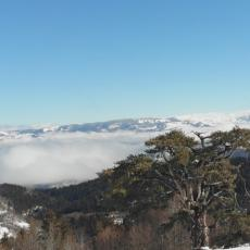 POLOMLJEN, ALI I DALJE SIMBOL SRBIJE: Prilaz Svetom boru otežan zbog snega, a turisti stižu čak iz Amerike