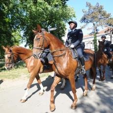 PONOS I DIKA SRBIJE: Glavnim ulicama Beograda prodefilovale policijske snage, konjička brigada sve oduševila (FOTO)
