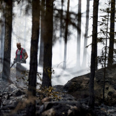 POŽAR KAKAV FINSKA NIJE VIDELA 50 GODINA: Drveća gorela kao šibice, 300 hektara šume nestalo za tren (VIDEO)