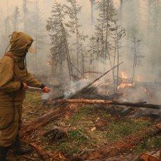 POŽARI BUKNULI ŠIROM RUSIJE: Preko milion hektara u plamenu, skoro 5.000 ljudi učestvuje u gašenju (VIDEO)