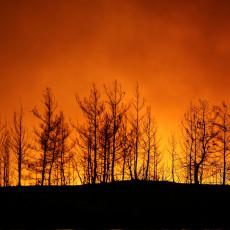 POŽARI BUKTE I U GRČKOJ! Vatra se spustila do mora, evakuisani turisti sa plaža