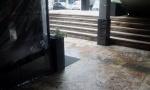 PRIVEDEN CRNOGORAC: Rasvetljena likvidacija Cvetanovića