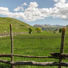 PROVEREN RECEPT ZA BRZU I DOBRU ZARADU: Ovaj posao na poljoprivrednom gazdinstvu donosi veliki PROFIT