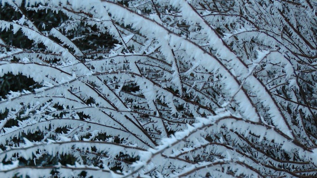 Pao sneg u Dalmaciji