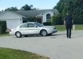 Pas vozio auto sat vremena: Ubacio menjač u rikverc i vozio u krug VIDEO