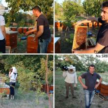 Pcelaru unisteno 131 pcelinje drustvo - sumnja u totalni herbicid