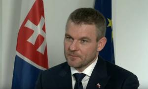Pelegrini uoči samita u Sofiji: Niko nam ne traži da priznamo Kosovo