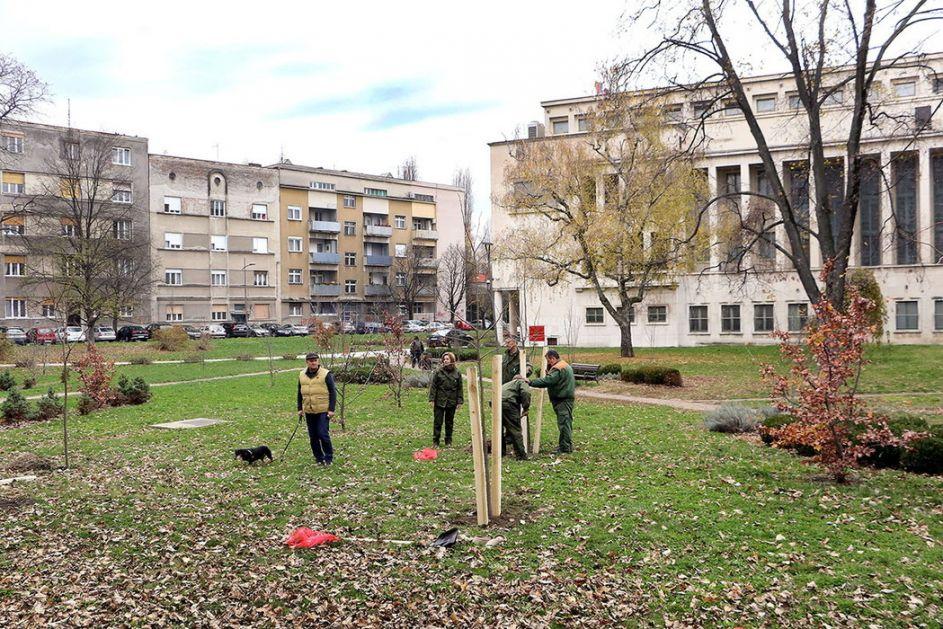 Počelo ozelenjavanje Vojvodine, biće zasađeno 10.000 sadnica