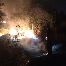 Podgorički vatrogasci od požara spasili MLADUNČE ZECA: Evo šta su zatim uradili (FOTO)