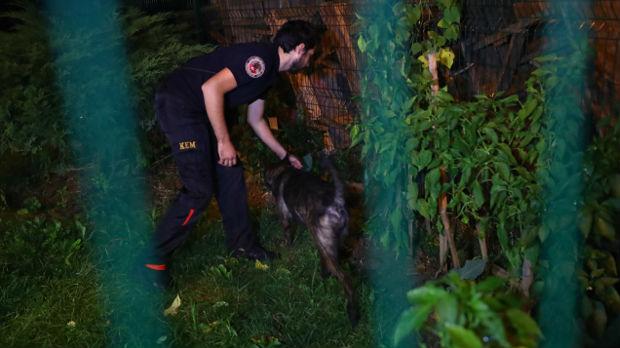 Policija traži Kašogijevo telo u šumi kraj Istanbula