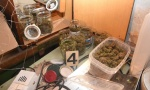 Policija zaplenila sedam kilograma marihuane, uhapšeno dvoje ljudi