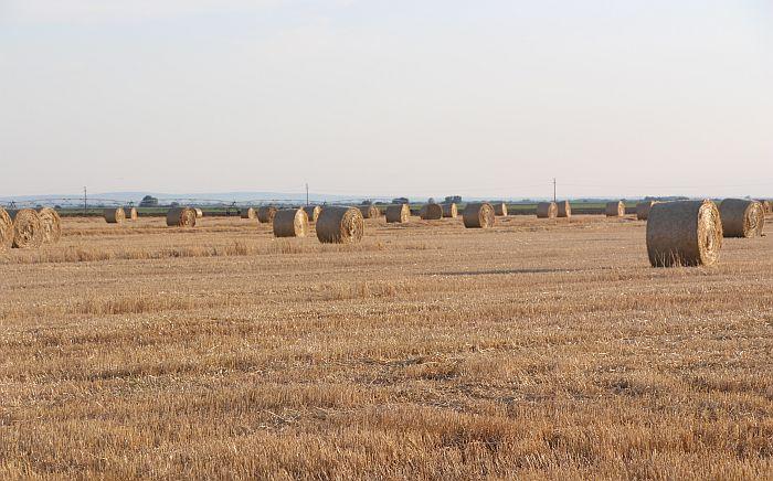Poljoprivrednici nezadovoljni, traže veću pomoć