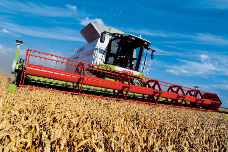 Poljoprivrednici ostali kratkih rukava: Cijena pšenice skočila, ali kasno